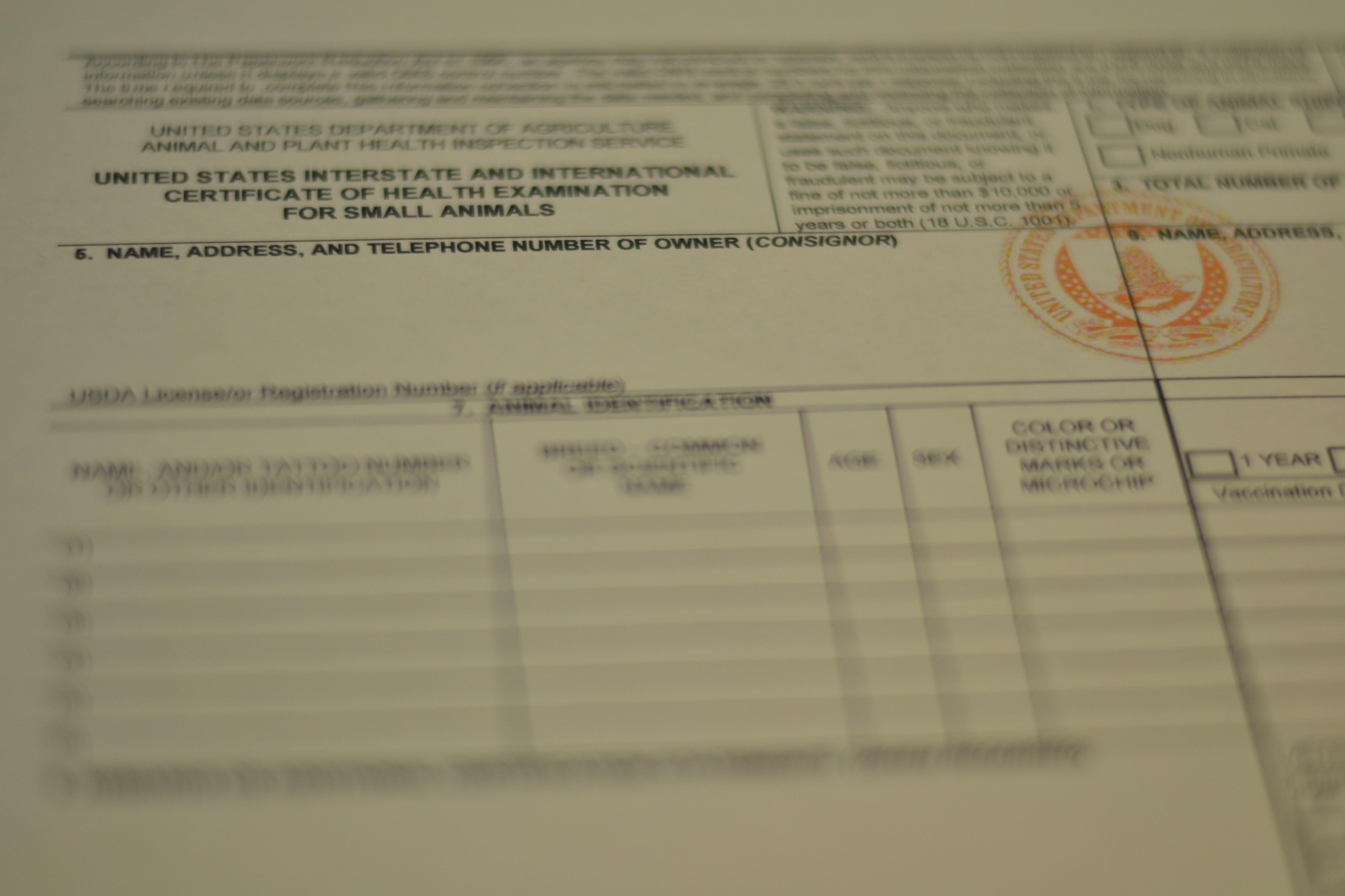 form veterinary usda 7001 international certificate health travel pet aphis evesham nj clinic archives vet cat passport pdf marlton certificates